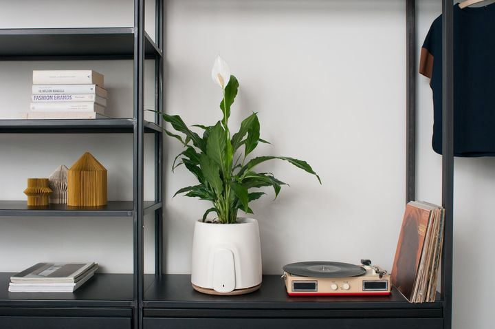 Natede, il purificatore d'aria intelligente per spazi indoor