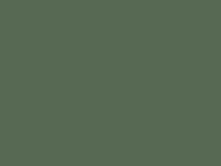 2052 Military Green