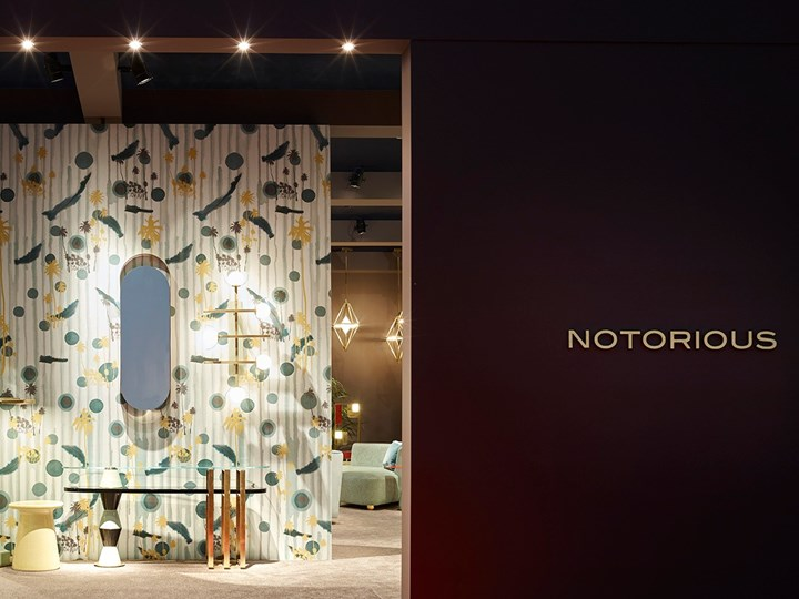 Notorious Collection by Marioni