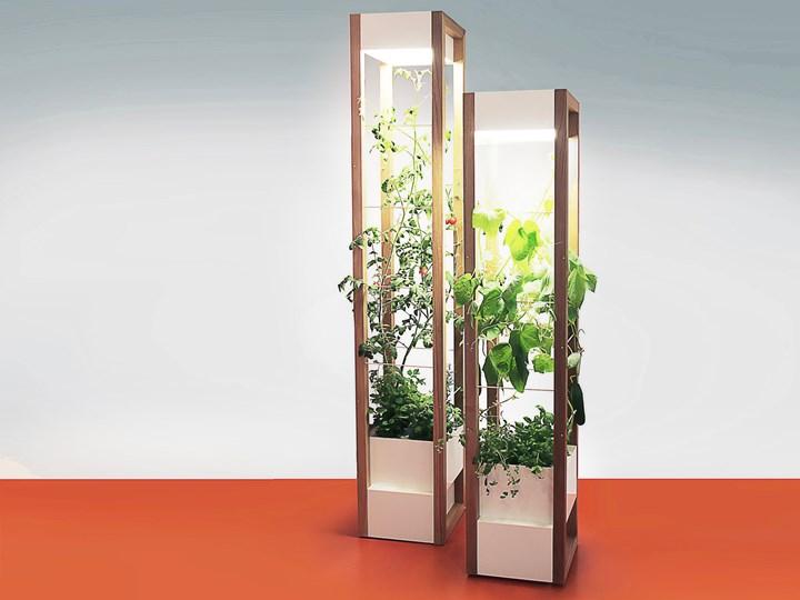 PROGRAMMPARTNER, Vegetable Living Room Takeover! - Raiseaplant