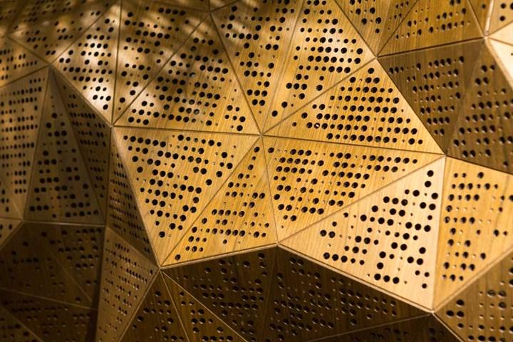 Wood-Skin Goes Acoustic