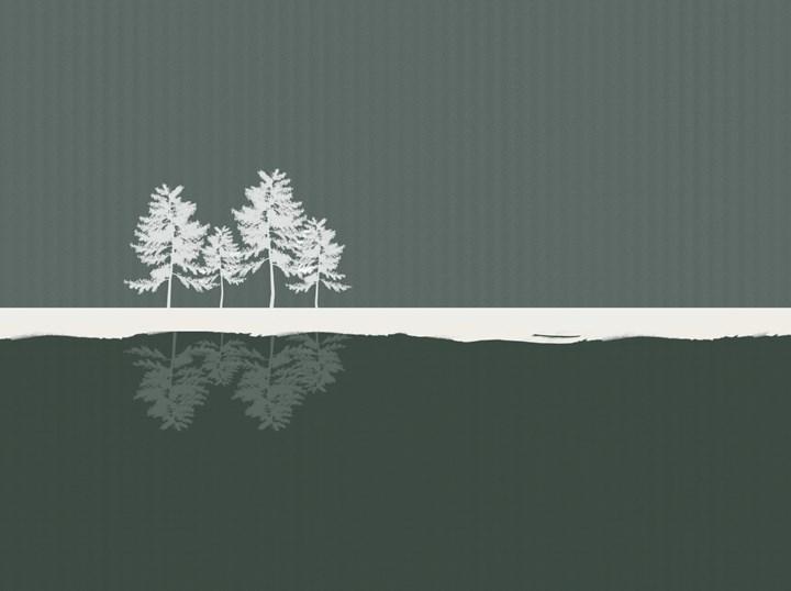 Officinarkitettura, into the woods green