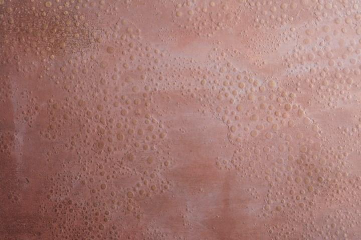 De Castelli's Experiments on the Antibacterial Properties of Copper