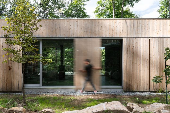 hinterhouse - Ph. David Dworkind