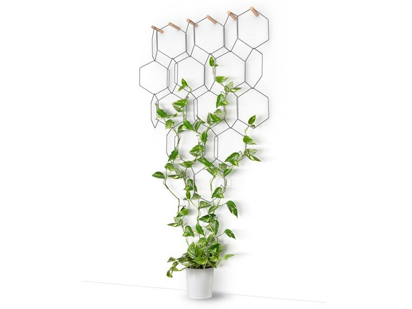 Metal vertical gardening trellis ANNO by Compagnie
