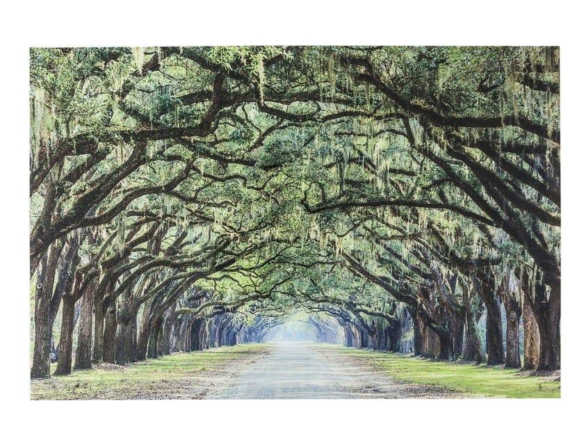 Stampa fotografica su vetro AVENUE OF TREES by KARE-DESIGN