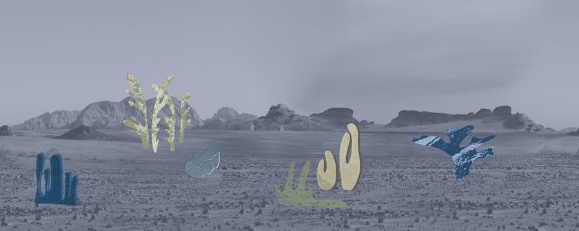 DESERT BOTANICA