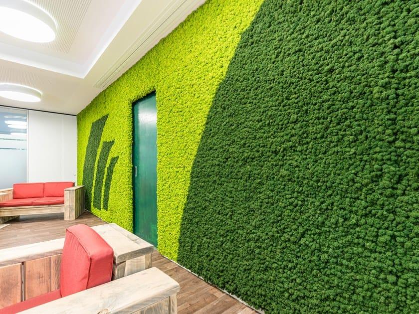 Moss Indoor Vertical Garden Evergreen Premium Moss Color