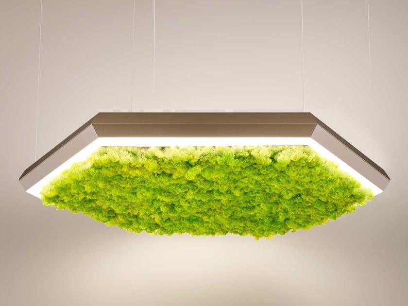 Lampada a sospensione a LED in licheni EXAGON SILENCE GREEN by Olev
