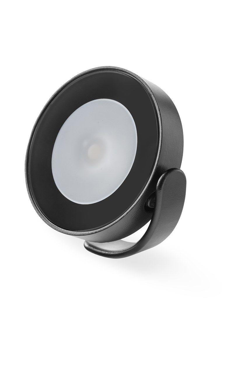 FROG proiettore, disponibile in colore bianco o nero o bronzo