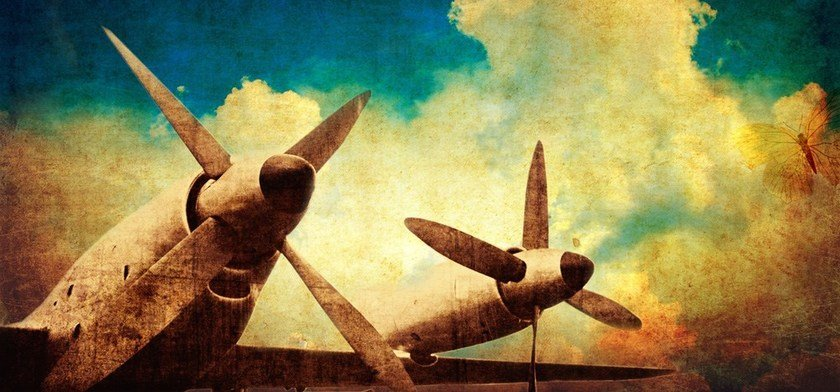 Canvas print FLIGHT cod. 400105 by MyCollection.it