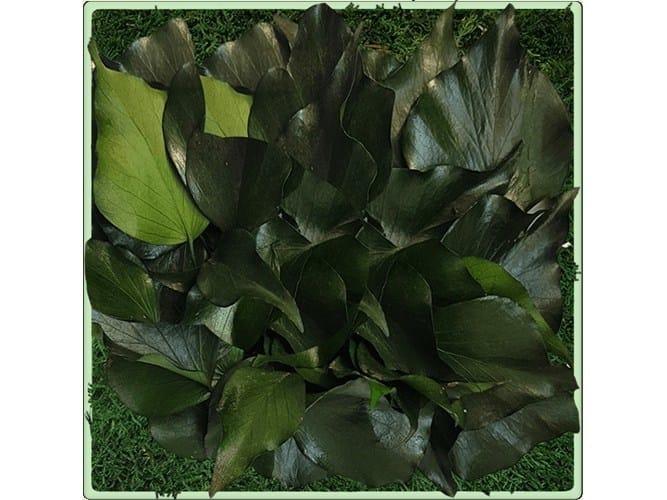 Vegetal frame MONCEAU by Add Plus
