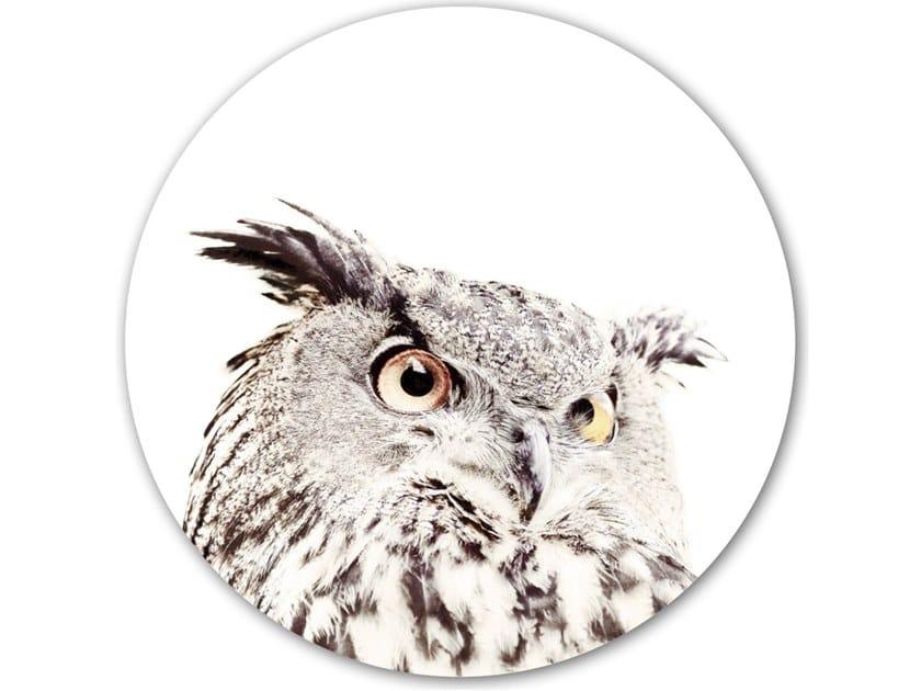 Decorazione adesiva a motivi OWL   Decorazione adesiva by Groovy Magnets