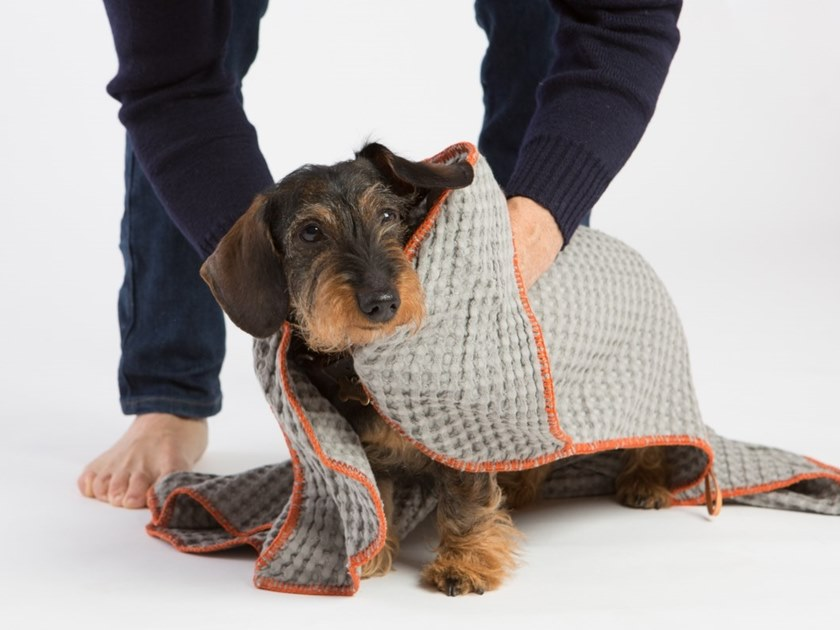 Cotton pet towel SALLY by 2.8 duepuntoOtto