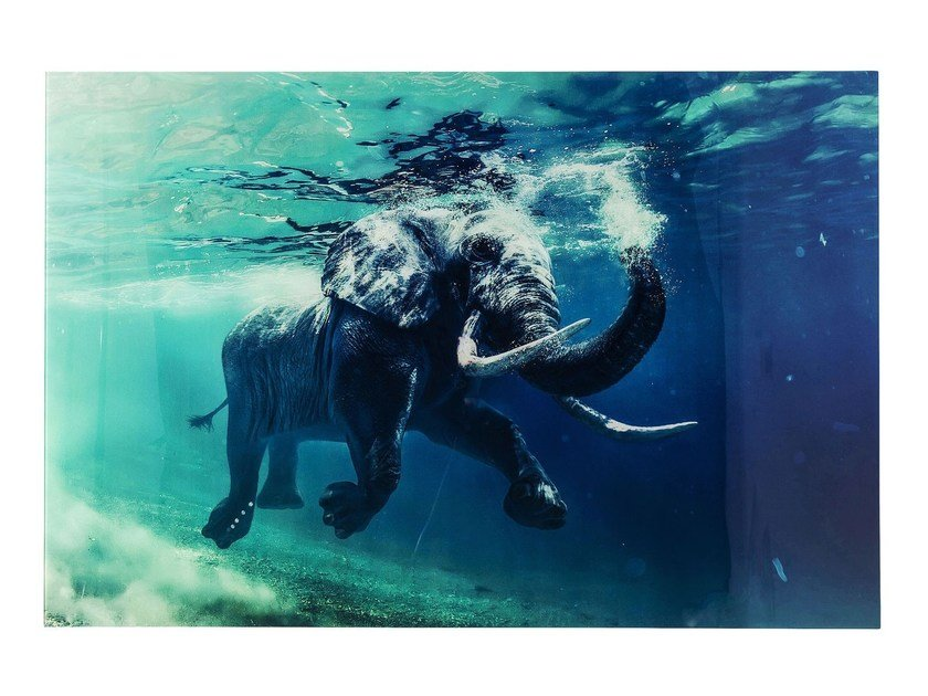 Tempered glass Print on glass SWIMMING ELEPHANT by KARE-DESIGN