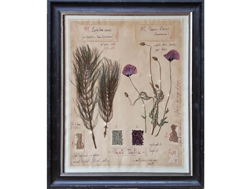 Erbario di fiori naturali con cornice artigianale in legno PIANTE TINTORIE by OFFICINA NATURALIS