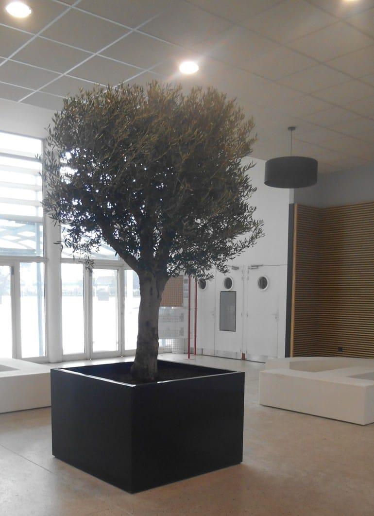 Fioriera da interno per alberi