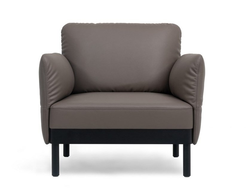 Leather armchair with armrests DS-840 | Armchair by de Sede