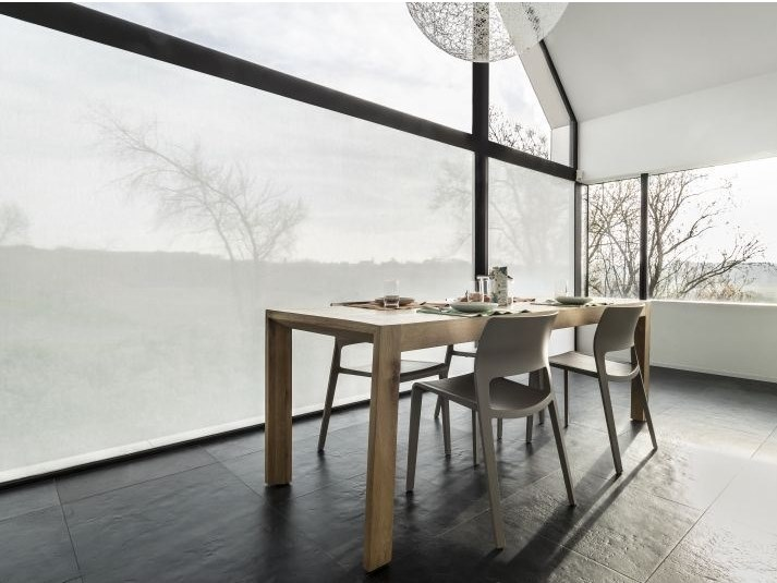 Self-adhesive transparent fabric for covering windows ASH by ACTE-DECO