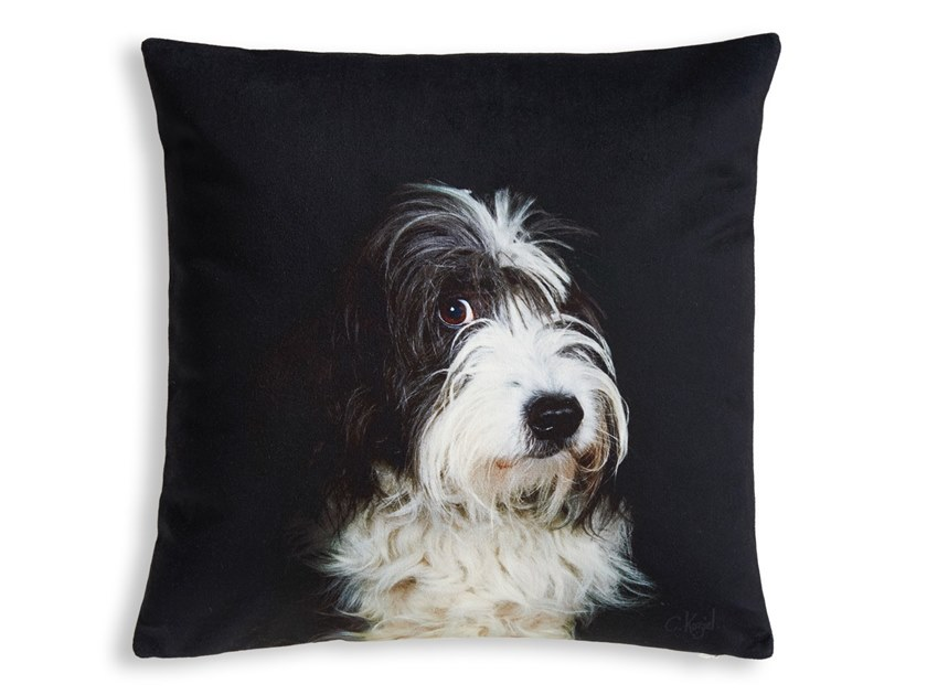 Square cushion BEARDED COLLIE by Koziel