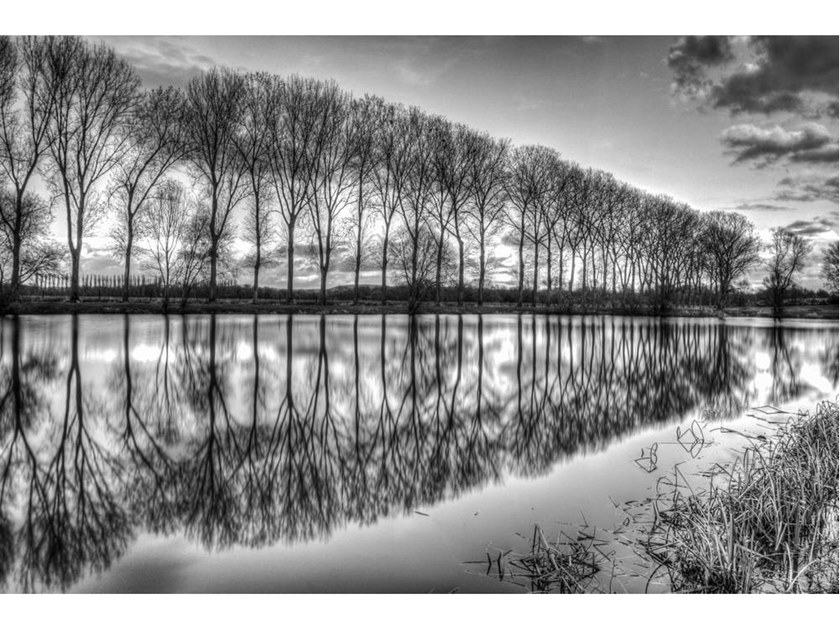 Stampa fotografica BANKS OF THE PONDS OF CATTENOM by Artphotolimited