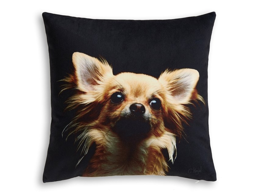 Square cushion CHIHUAHUA by Koziel