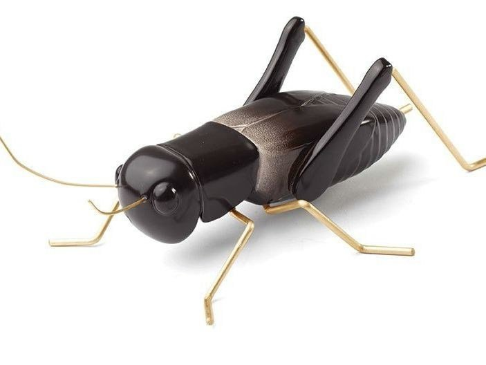 Contemporary style ceramic decorative object CRICKET BLACK by Mambo Unlimited Ideas