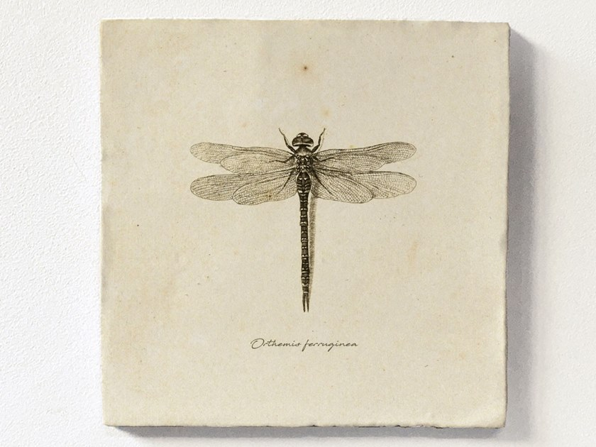 Magnetic tile DRAGONFLY by Groovy Magnets