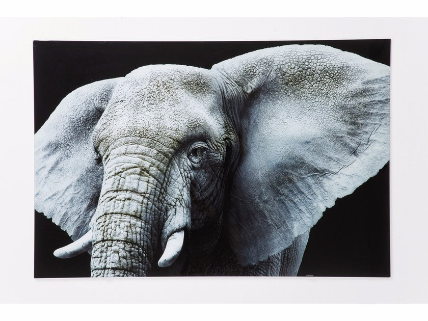 Photographic print / Print on glass ELEFANT by KARE-DESIGN