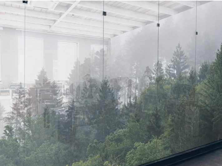 Self-adhesive transparent fabric for covering windows FOREST MIST by ACTE-DECO