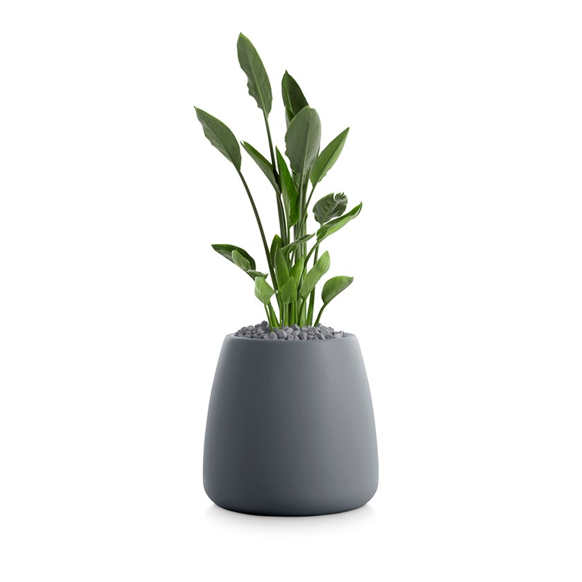 GOBI 1 | Vaso da giardino