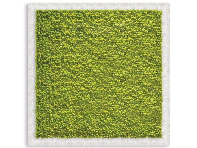 Stabilized plants vegetal frame GREENERY PANELS | Vegetal frame by Adriani e Rossi edizioni