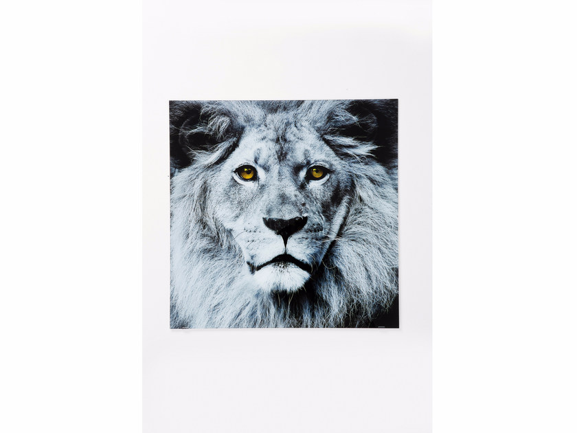 Photographic print / Print on glass LION | Print on glass by KARE-DESIGN
