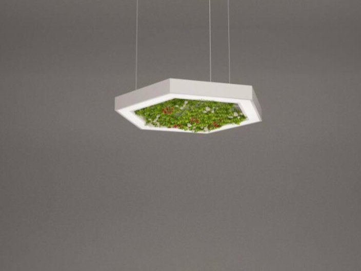 LED pendant lamp NGS AFG H | Pendant lamp by Neonny
