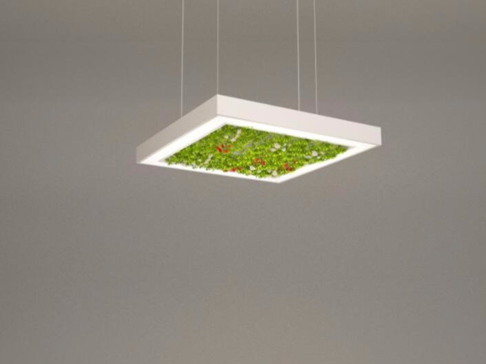 LED pendant lamp NGS AFG S | Pendant lamp by Neonny