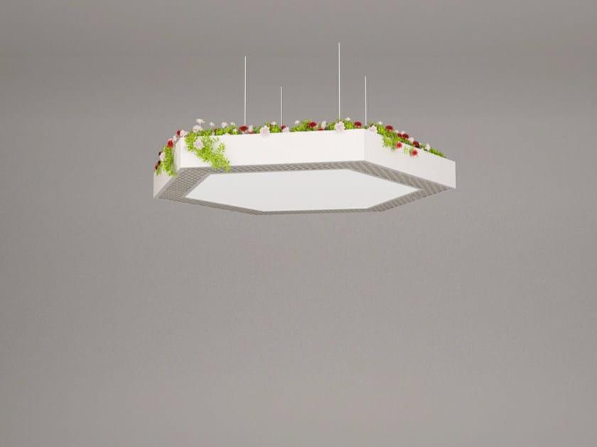 LED pendant lamp NGS LA H HB | Pendant lamp by Neonny