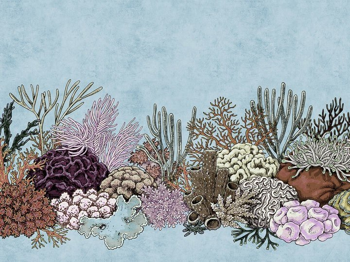 Digital printing wallpaper OCTOPUS GARDEN by Architects Paper