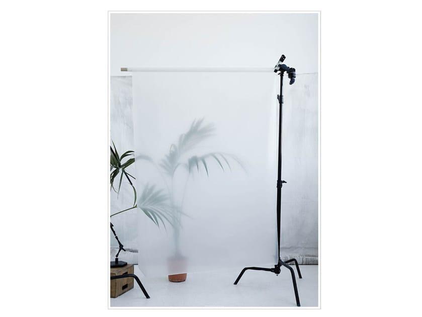 Photographic print PALM II by Kristina Dam Studio