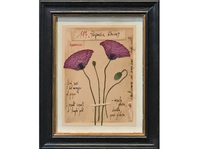 Herbarium with natural flowers and handicraft wooden frame PAPAVER RHOEAS by OFFICINA NATURALIS