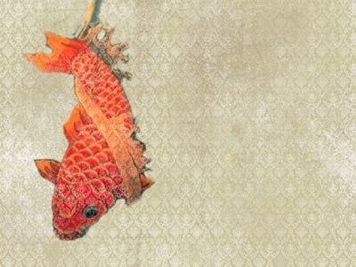 Design motif wallpaper TANGERINE by Wall&decò