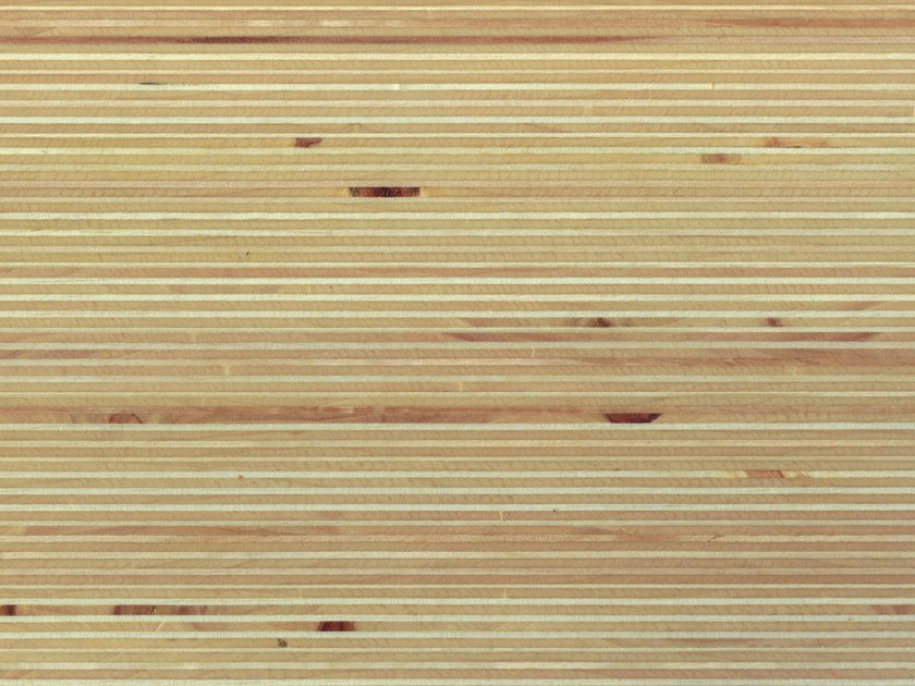 Poplar Veneered panel PLEXWOOD® POPLAR by Plexwood
