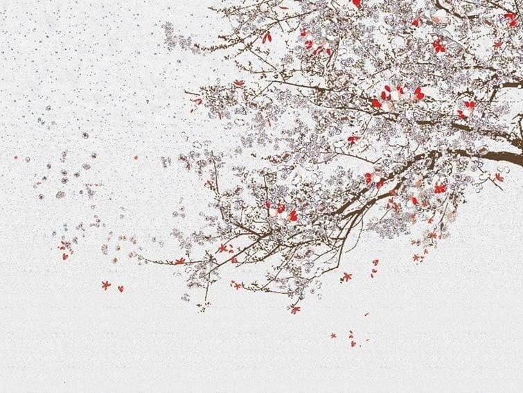 MOMO by Wall&decò