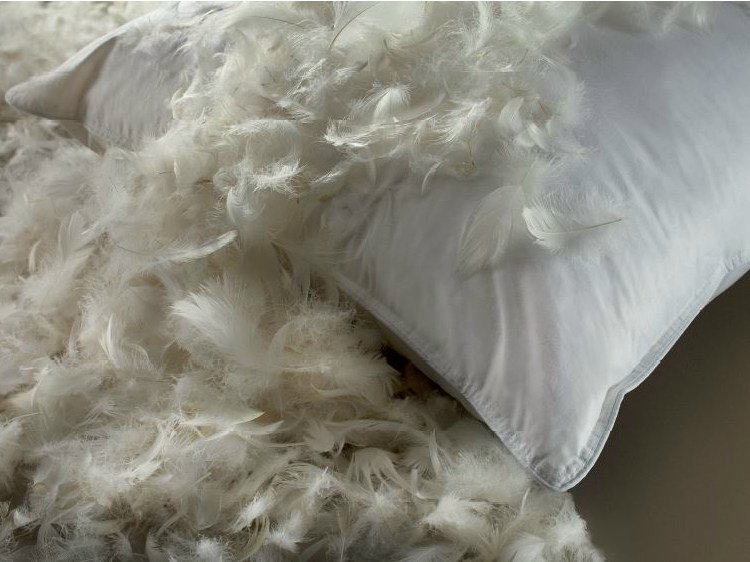 Rectangular Goose Feather Pillow Extra Lusso By Demaflex