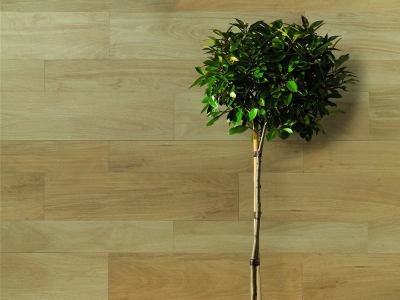 Porcelain stoneware wall tiles with wood effect NUANCES | Wall tiles by FAP ceramiche