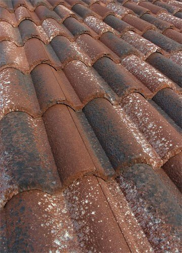 Cement roof tile COPPOGOLD® by Tegolaia