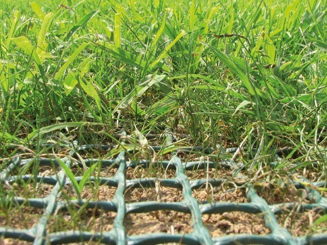 Lawn reinforcement TR by TENAX
