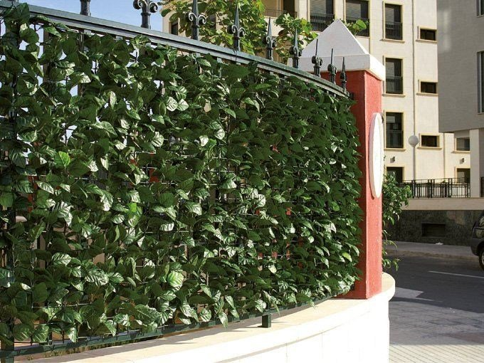 Synthetic hedge with laurel leaves DIVY LAURUS by TENAX