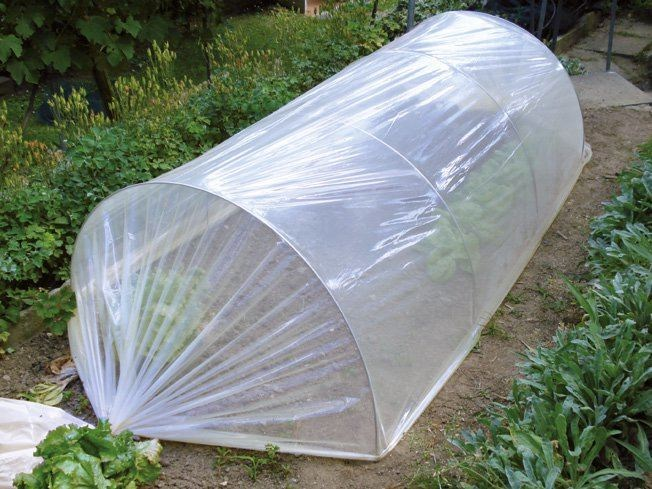Plastic film for greenhouses COAT FILM by TENAX