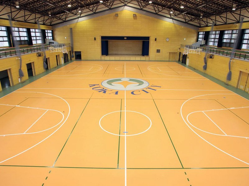 Sports Flooring Taraflex 174 Sport M Plus By Gerflor