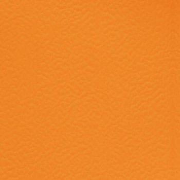 6134 Tangerine